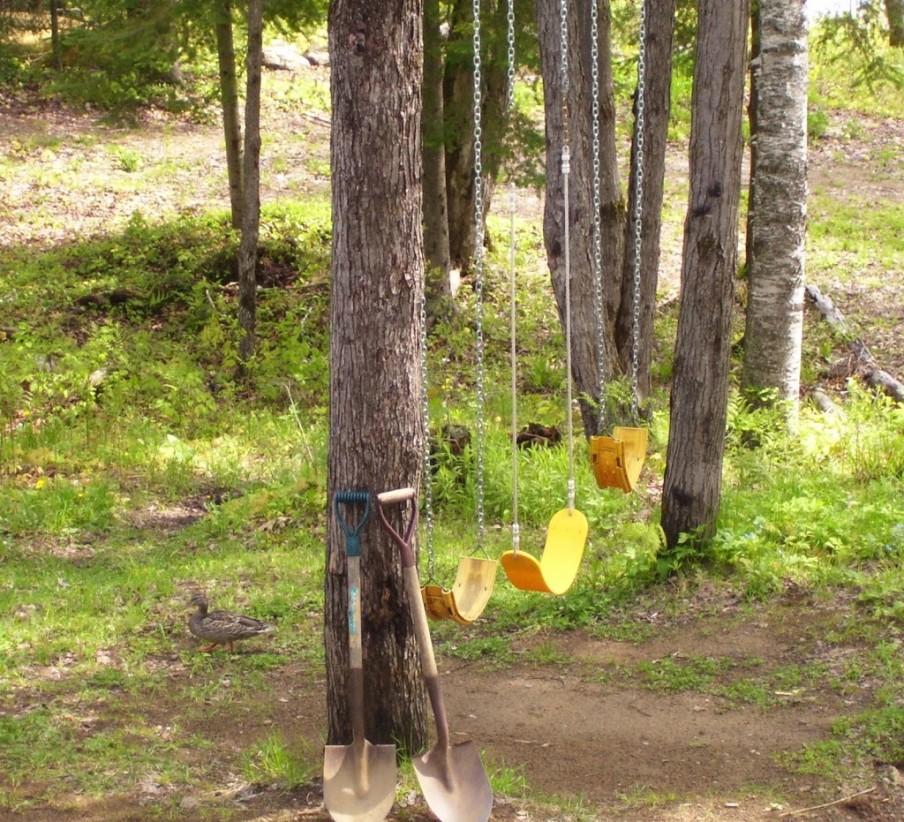 duck-swings