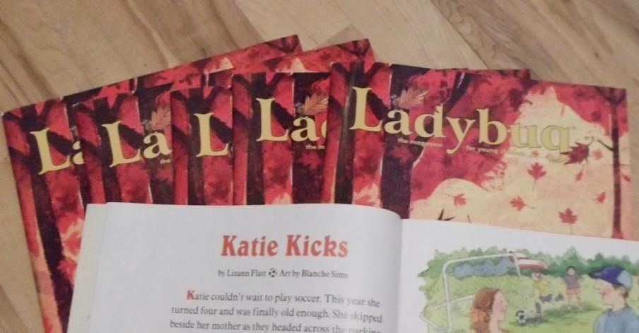 ladybug-copies-arrived