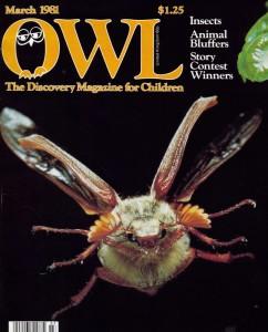 owlmarch81