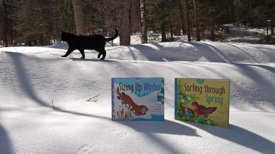 shadow spring winter book